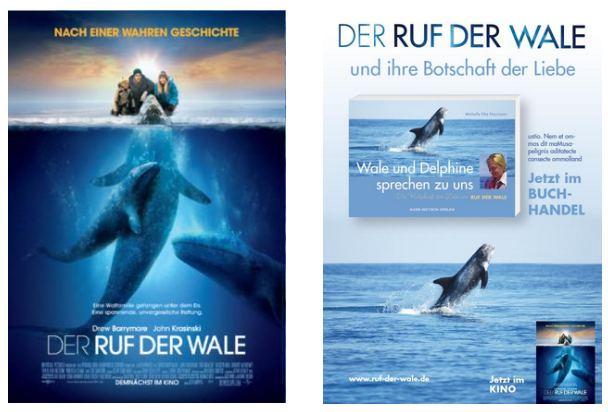 """Hollywoodfilm """"Ruf Der Wale"""" Mit Drew Barrymore – Die Geschichte Zum Buch"""